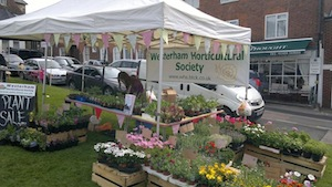 Horticultural Society