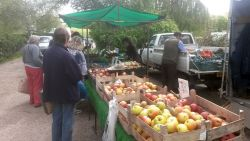 Oakapple Farm Stall