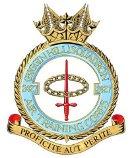 Air Cadets Logo