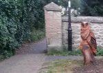 Owl Gatekeeper