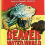Beaver Waterworld