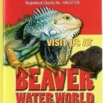 Beaver Waterworld