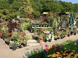 Westerham Heights Garden Centre